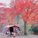 東京に無料キャンプ場がある?東京の無料キャンプ場をご紹介!