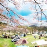 桜はどこで見れる!関西で花見ができるキャンプ場4選!