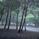 雨キャンプにこそ おすすめのキャンプ場3選!
